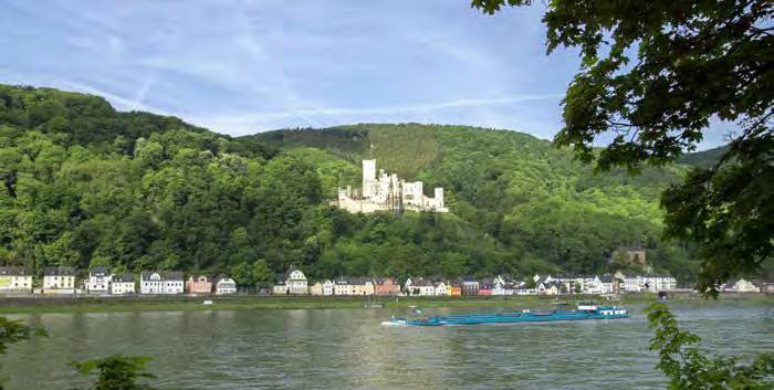 Auch das Umfeld von Schloss Stolzenfels soll aufgewertet werden. (Foto: Fotolia/sehbaer_nrw)