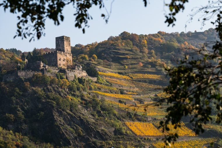 Burg Gutenfels. (Foto: Piel media)
