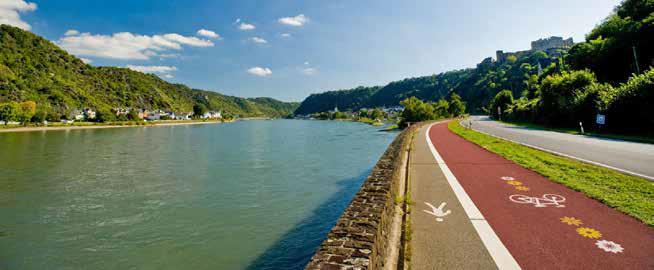 Mit geliehenen E-Bikes radelt Familie Schmidt bei herrlichem Frühlingswetter auf dem Rheinradweg. (Foto: Rheinland-Pfalz Tourismus GmbH/Dominik Ketz, Montage)