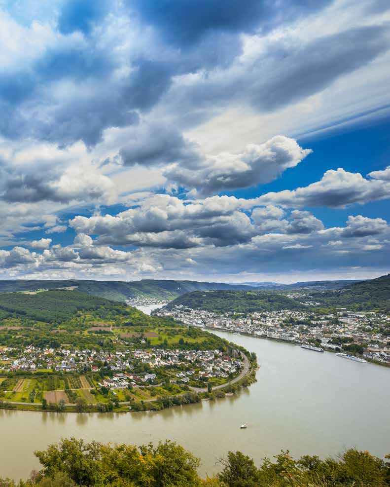 Blick vom Bopparder Hamm auf die große Rheinschleife. (Foto: Piel media)