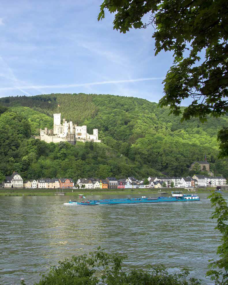 Auch das Umfeld von Schloss Stolzenfels soll aufgewertet werden. (Foto: Fotolia.com/sehbaer_nrw)
